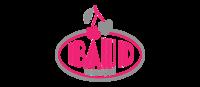 Logo BAUD
