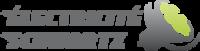 Logo ELECTRICITÉ BERNARD SCHWARTZ