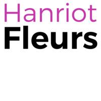 HANRIOT Fleurs