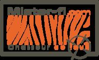 Logo Mister-Fi.com