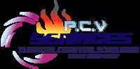 Logo PCV SERVICES
