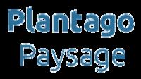 PLANTAGO PAYSAGE