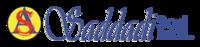 Logo SADDADI SARL