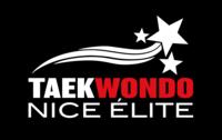 Logo TAEKWONDO NICE ELITE